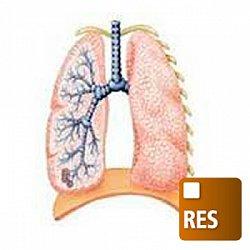 呼吸モニタモジュール